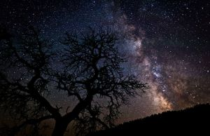 night-sky1