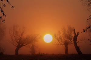 desolate-landscape-sasa-prudkov