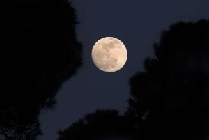 lluna blanca