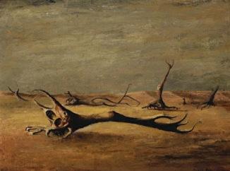 desolació